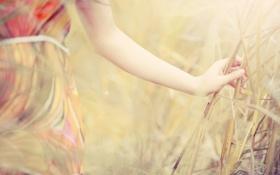 Картинка девушка, природа, фон, обои, настроения, растение, платье