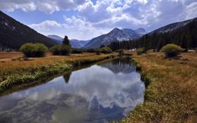 Картинка пейзаж, река, трава, лес, озеро, yosemite, деревья
