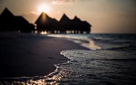 Обои море, берег, волна, утро