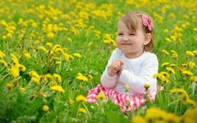 Картинка лето, настроение, девочка, одуванчики