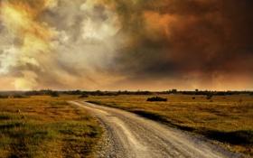 Обои дорога, поле, облака
