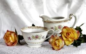 Картинка цветок, цветы, розы, чашка, красивые