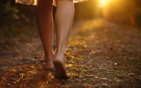 Картинка девушка, солнце, природа, фон, земля, ноги, настроения