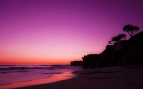 Обои песок, пляж, деревья, рассвет, океан, скала