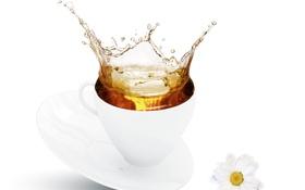 Картинка цветы, брызги, чай, чашка, хризантемы