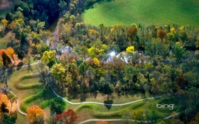 Картинка деревья, осень, река
