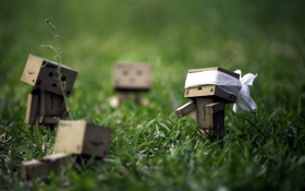 Обои трава, настроение, игра, коробки, amazon