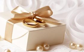 Обои подарок, кольца, лента, жемчуг, бант