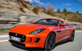 Обои машина, Jaguar, ягуар, вид спереди, F-Type, V8 S