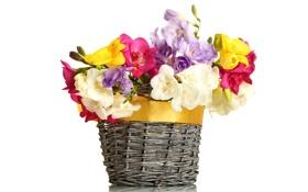 Обои цветы, корзина, букет, бант