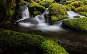 Обои поток, камни, мох, вода