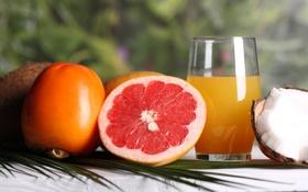 Обои апельсиновый, сок, хурма, грейпфрут, фрукты, кокос