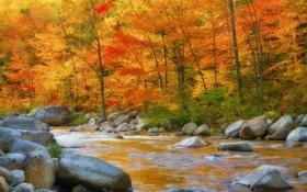 Картинка осень, листья, деревья, горы, река, камни, поток