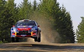 Обои Спорт, Скорость, Ситроен, Citroen, Red Bull, DS3, WRC