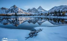 Обои зима, лес, снег, горы, озеро, Alberta, Canada