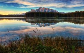 Картинка трава, озеро, отражение, гора, Break of Dawn at Two Jack