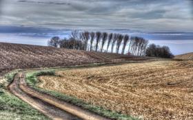 Картинка осень, поле, дорога