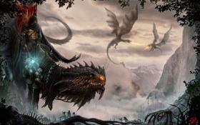 Картинка деревья, горы, замок, магия, листва, череп, драконы