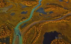 Картинка осень, деревья, река, краски, панорама, Швеция, Sarek National Park