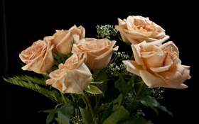Обои розы, букет, черный фон