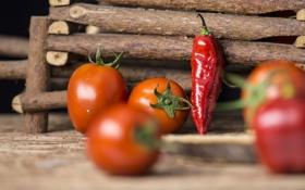 Обои еда, палочки, перец, овощи, помидоры, деревяшки
