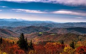 Картинка осень, горы, леса