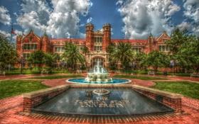 Картинка пальмы, газон, обработка, Флорида, фонтан, США, университет