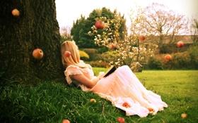 Обои девушка, настроение, яблоки