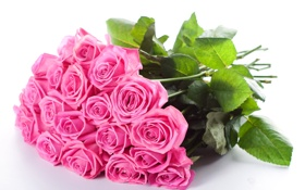Обои pink, flowers, beautiful, bouquet, roses