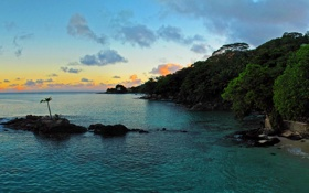 Картинка море, деревья, закат, тропики, камни, пальмы, побережье