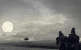Обои поле, небо, птицы, дерево, арт, прощание, фигуры