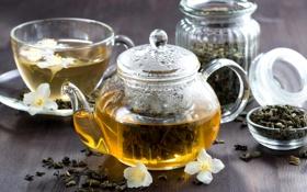 Картинка зеленый, чай, чайник, напиток, заварник, жасмин