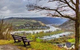 Обои деревья, скамейка, город, Германия, канал, водный, Senheim