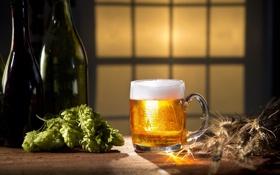 Обои пена, пиво, колоски, кружка, бутылки, хмель