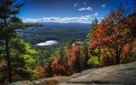 Картинка лес, облака, деревья, горы, озеро, панорама, США