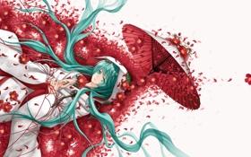 Картинка девушка, цветы, мак, зонт, аниме, лепестки, арт