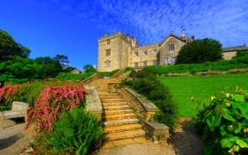 Обои зелень, небо, солнце, деревья, замок, газон, Англия