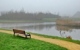 Обои трава, туман, лавочка, канал, Парк, скамья