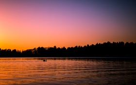 Картинка закат, озеро, лебедь, Finland, Helsinki, Seurasaari