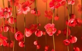 Обои цветок, коллаж, весна, открытка, лепестки, ветка