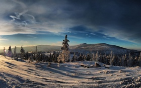 Обои зима, лес, горы, небо