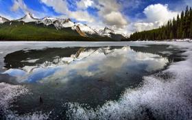 Обои лед, лес, небо, облака, деревья, горы, озеро