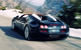 Обои Bugatti Veyron, cars, auto, Speed, Supercars, Sport, cуперкар