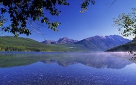 Обои лес, Природа, ветки, деревья, горы, пейзаж, озеро