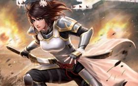 Картинка цветок, девушка, огонь, меч, доспехи, арт
