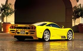 Обои желтый, отражение, арка, Saleen, вид сзади, кусты, гиперкар