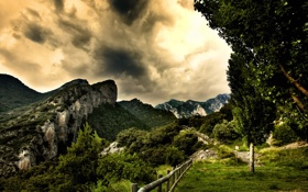 Обои лес, небо, горы, вид, ограда, тропинка, photographer