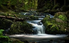 Картинка ручей, камни, водопад, мох, речка, Швеция, Sweden