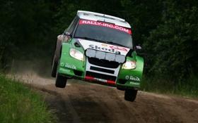 Обои Спорт, Машина, Скорость, Фары, WRC, Rally, Передок