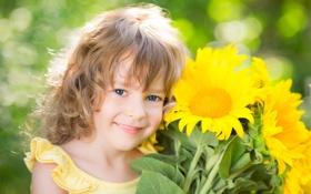 Обои подсолнухи, голубоглазая, улыбка, ребёнок, девочка